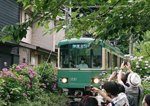 江ノ電 御霊神社前 / Enoden running in front of Gorei Temple